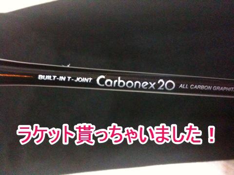 カーボネックス20