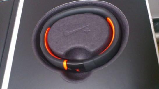 FuelbandSE